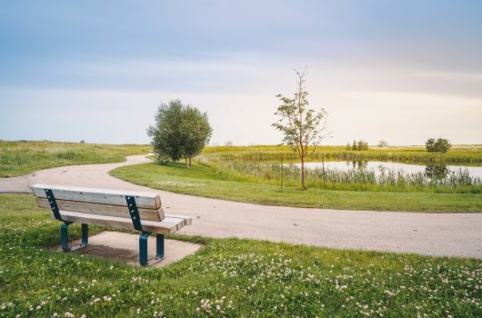 park-bench-pond-trail