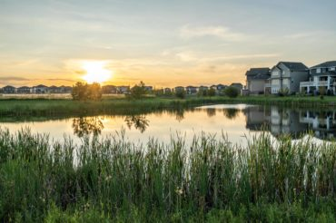 sunset-over-community-pond-tall-grass