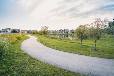 park-walkway-trees