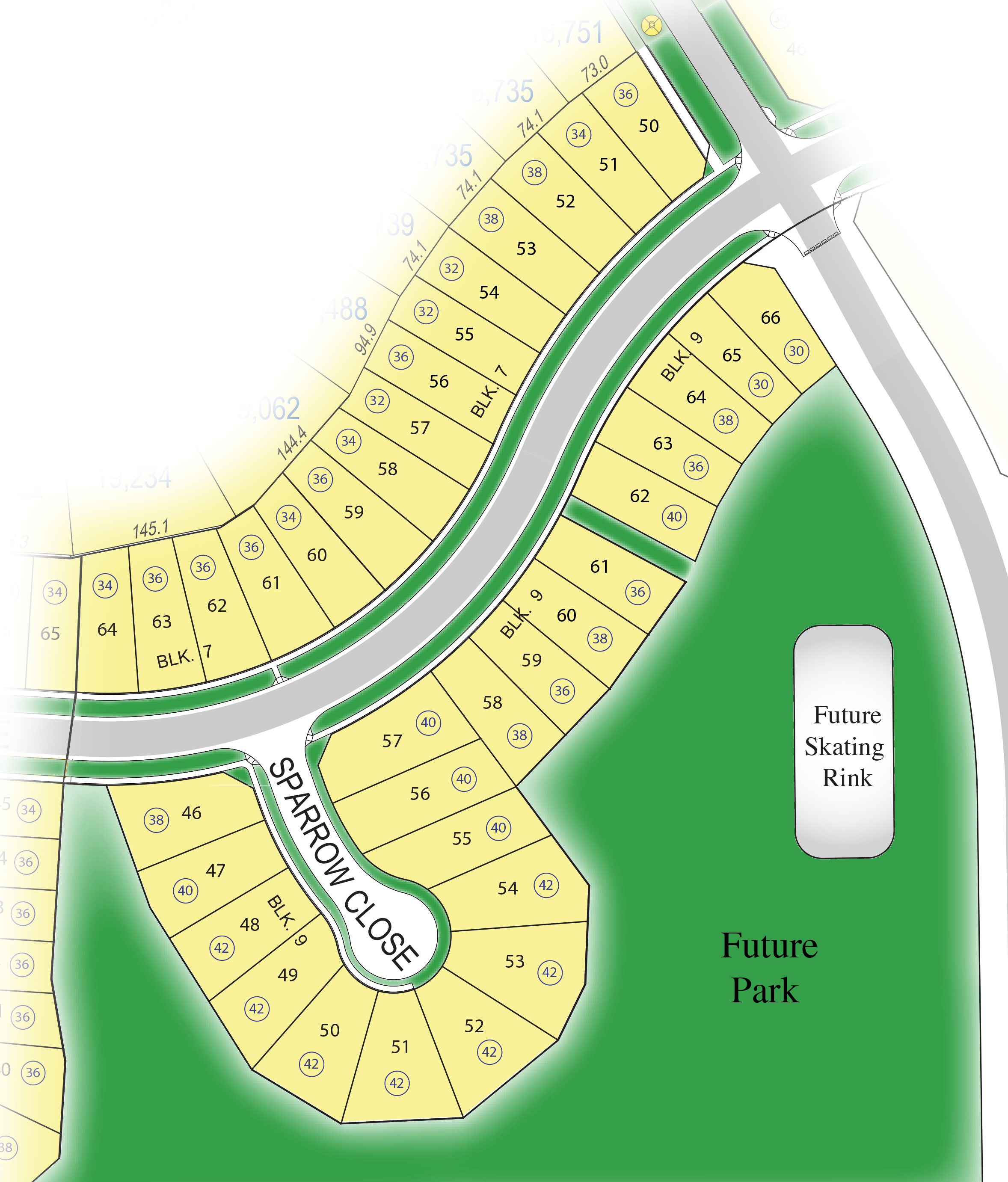 Lot Map Large Single Family